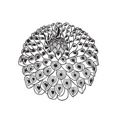 beautiful monochrome black and white dahlia flowe vector image