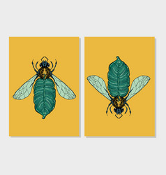 bee and palm leaf flora and fauna vintage print vector image
