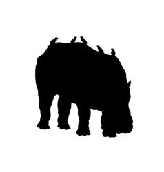 black silhouette hippopotamus vector image