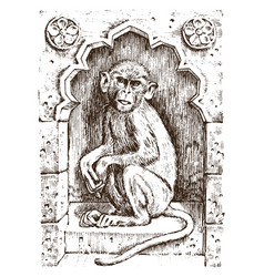 cute monkey or vintage primate hand drawn vector image