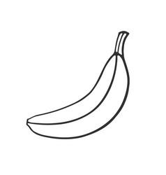 Doodle not peeled banana vector