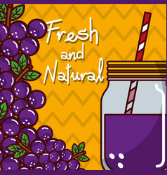 Glassware jar juice grape fruit fresh and natural vector
