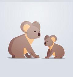 Koalas icon cute cartoon wild animals mother vector