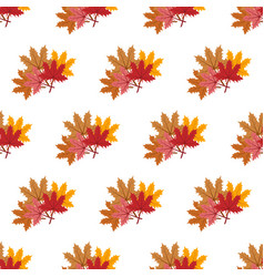maple leaf pattern vector image