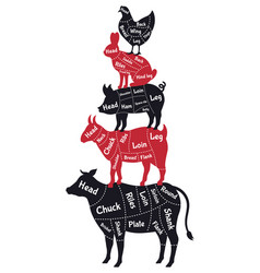 meat cuts poster vintage butcher shop meat cuts vector image
