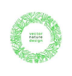 organic label green tea vegan food bio drink vector image
