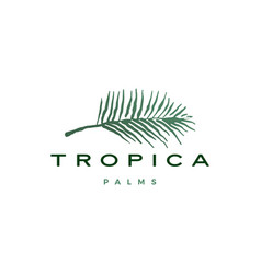 palm leaf tropical logo icon vector image