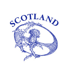 Rugball with thistle scotland drawing vector