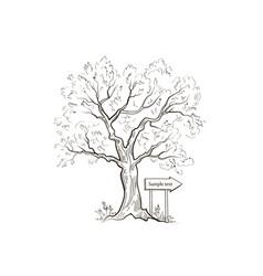 tree arrow sign summer nature landscape outdoor vector image