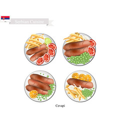 cevapi or cevapcici the national dish of serbia vector image vector image
