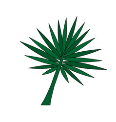 color image branch with thorns as leaves vector image vector image