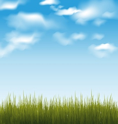 Spring background with green grass and sky vector image vector image