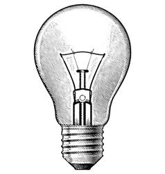 Figure bulbs vector image vector image