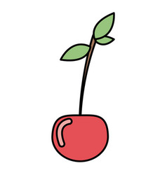 colorful vegetable cherry icon vector image vector image