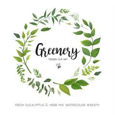 Floral card design with green eucalyptus fern vector
