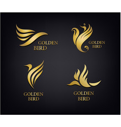 Golden birds set luxury logos isolated vector