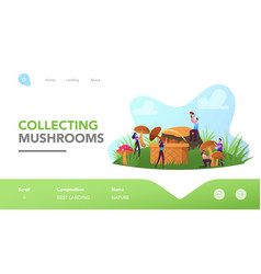 mushroomers walk in forest activity hobby vector image