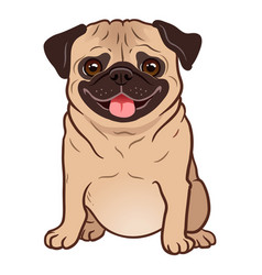 pug dog cartoon cute friendly fat chubby fawn vector image