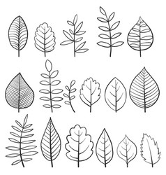 Set of doodle tree leaves vector