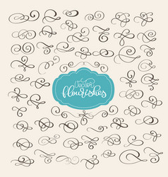 set of flourish swirl ornate decoration for vector image