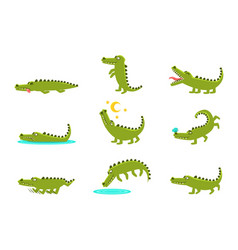 Smiling friendly crocodile cartoon character and vector