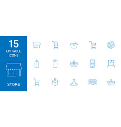 store icons vector image