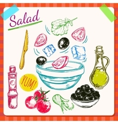Salad Cooking Process vector image