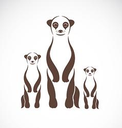 Image of an meerkats vector