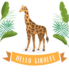 giraffe cartoon vector image