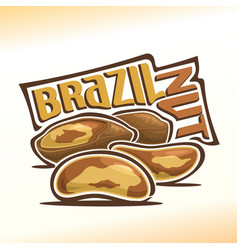logo for brazil nuts vector image