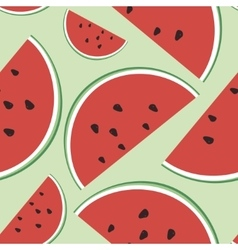 seamless of watermelon on a vector image vector image