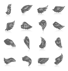 Wing Icon Set vector