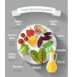 Salad cooking infographics vector image vector image
