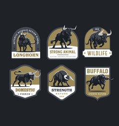 Bulls and buffalo vector