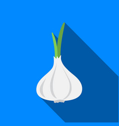 garlic icon flate singe vegetables icon from the vector image