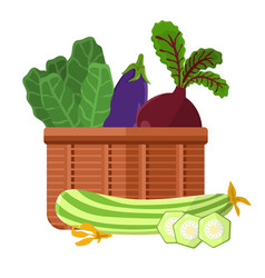 Harvest in basket collection vector
