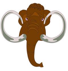 Head animal mammothhead of the mammoth on white vector