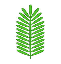 paripinnate leaf icon cartoon style vector image