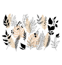 set of colorful leaves and branches on white vector image