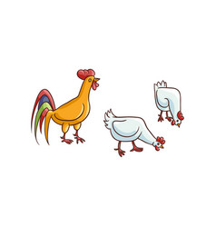 sketch hand drawn rooster chicken set vector image