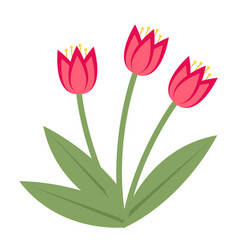bouquet of pink tulips icon flat style isolated vector image vector image