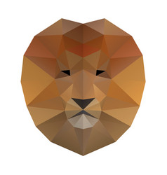 low poly lion vector image