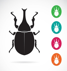 Stag beetle vector image vector image