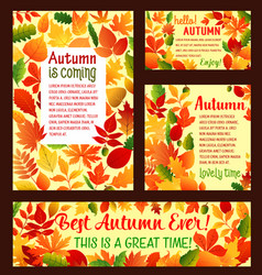Autumn falling leaf foliage poster template vector