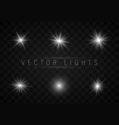 bright star light vector image