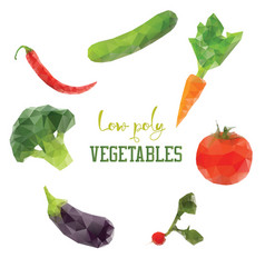 carrot broccoli pepper tomato diet vegan low vector image