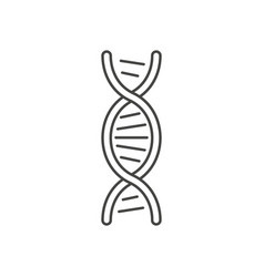 dna helix symbol isolated on white background vector image