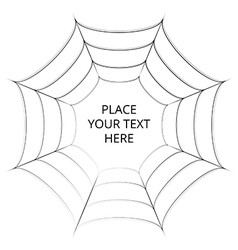 Frame of a spider web on white background vector image
