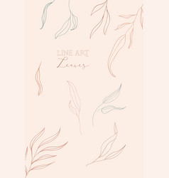 Line drawing leaves vector