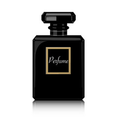 Perfume print black bottle haute couture vector